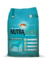 Nutra Gold Salmon Adult Dog 2x15 kg + sleva 3%